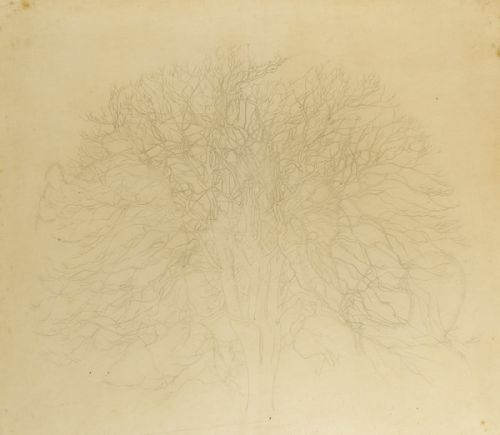 Study for the background tree in  St. Martin's, circa 1930 -